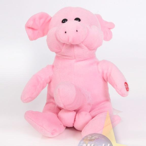 Schweine penis